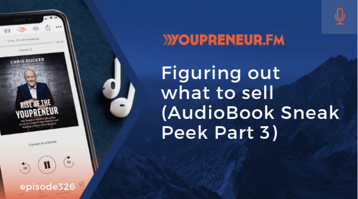 Figuring Out What to Sell (AudioBook Sneak Peek Part 3)